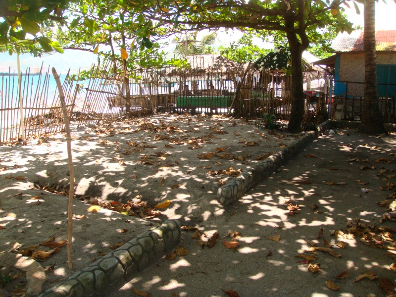 FOR SALE: Lot / Land / Farm Zambales > Olongapo 2