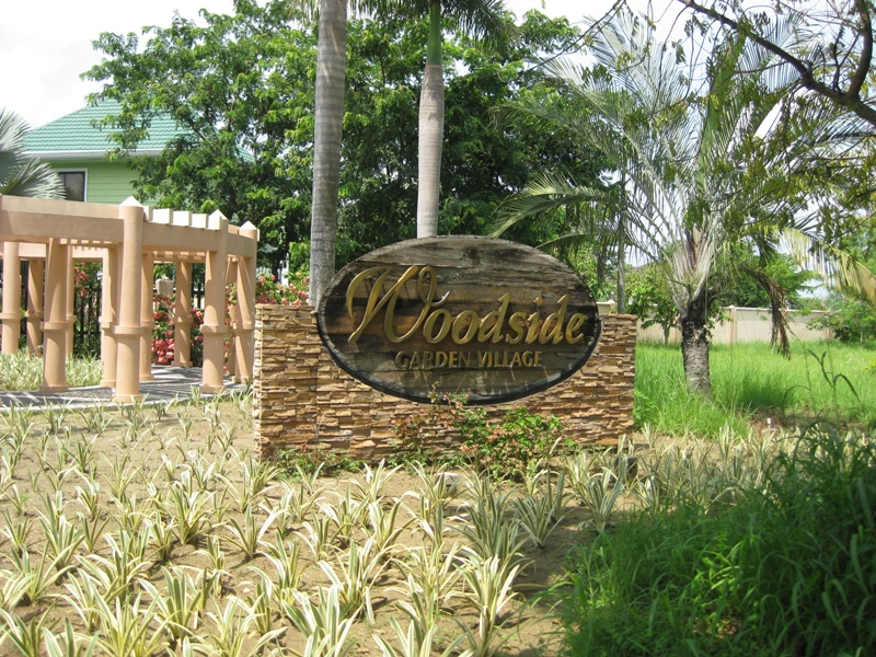 FOR SALE: Lot / Land / Farm Pangasinan