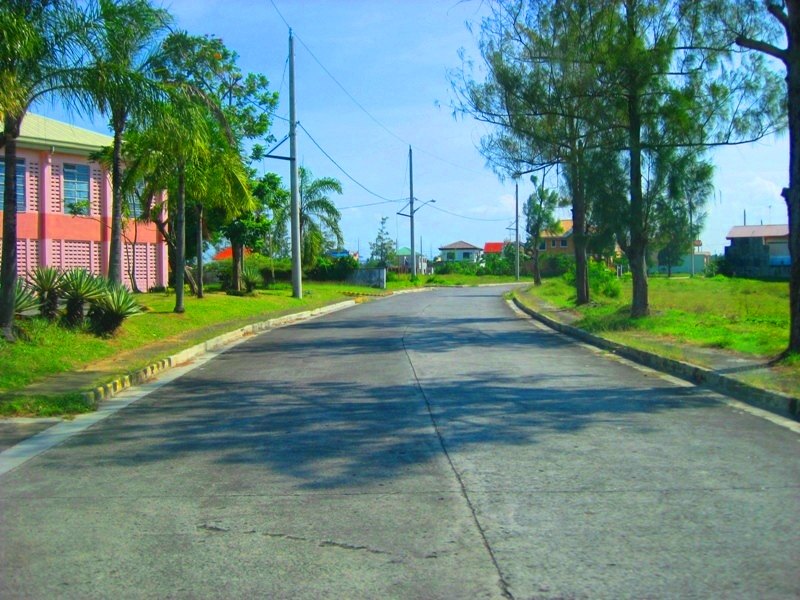 FOR SALE: Lot / Land / Farm Cavite > Dasmarinas 3
