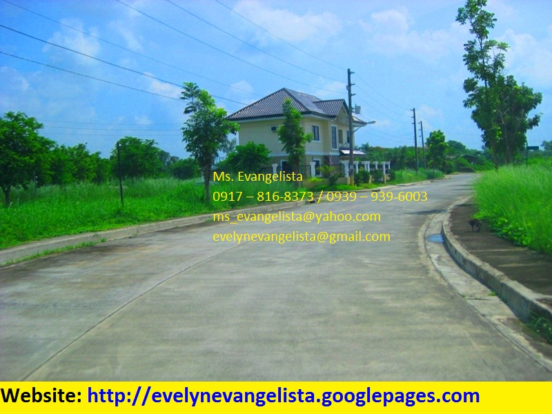 FOR SALE: Lot / Land / Farm Pangasinan 5