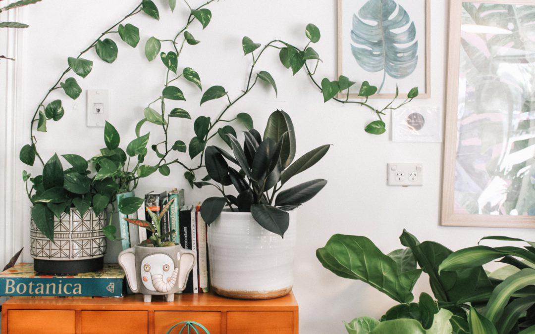 Sustainable Homeware & Interior Design Ideas