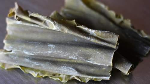 Alga Kombu essiccata