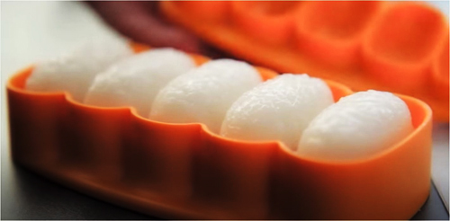 Nigiri Maker Tupperware