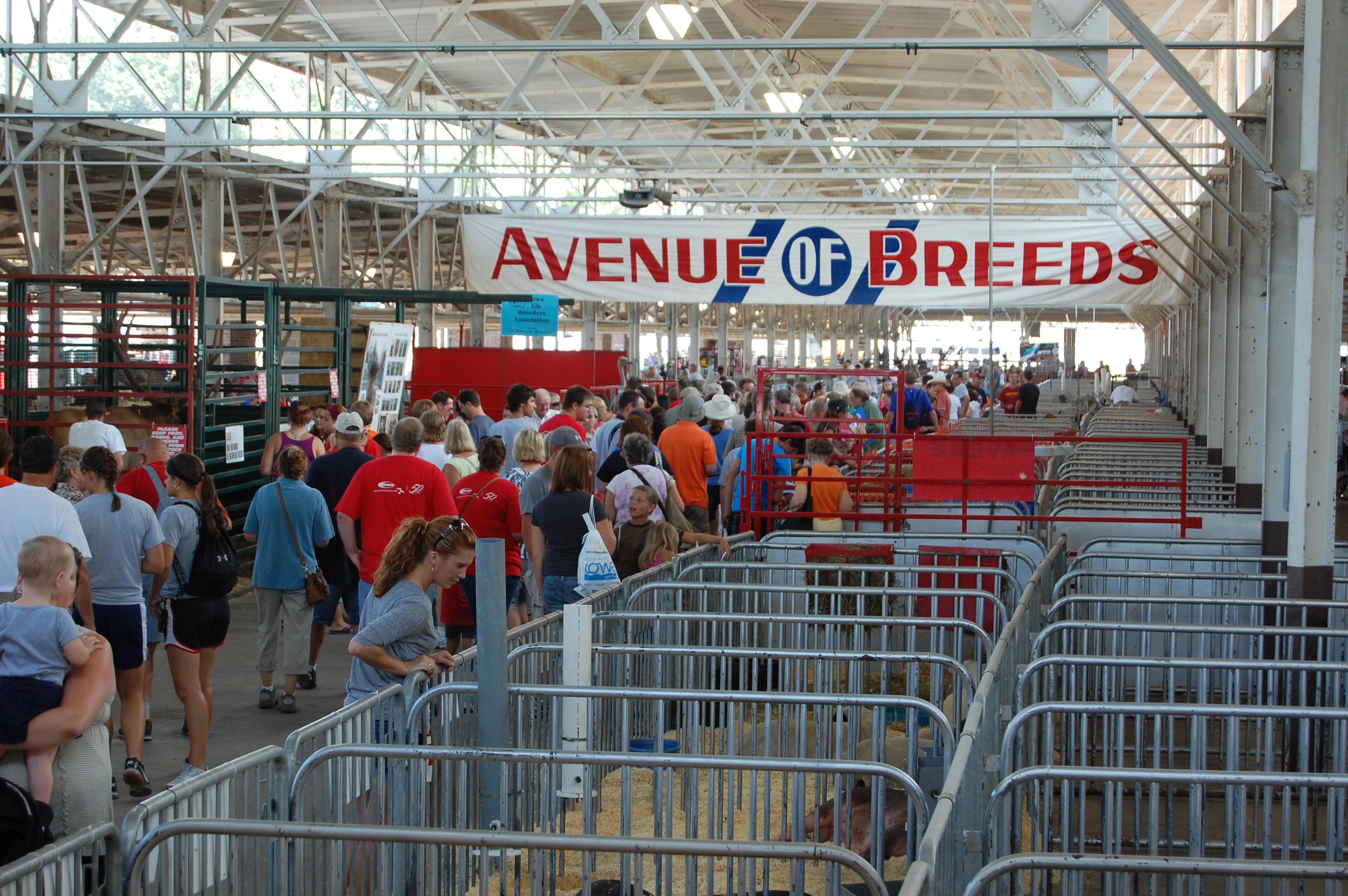 Avenue of Breeds