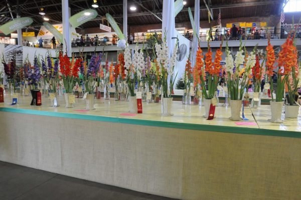 Flower entries at the John Deere Agriculture Building.