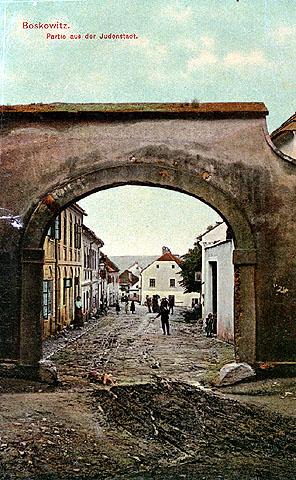 בוסקוביצה