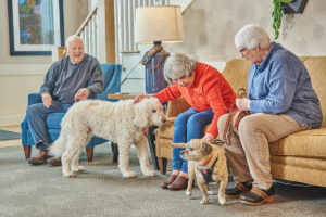 Elderly residents with pets