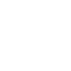 level of care icon