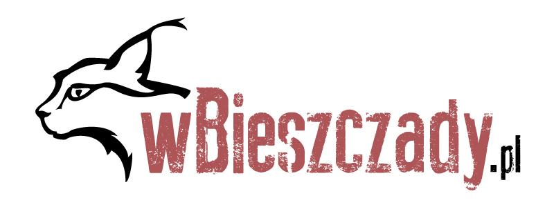 wBieszczady.pl to twoje źródło informacji na temat Bieszczad, mieszkańców, lokalnej kultury, szlaków i atrakcji turystycznych.