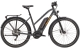 Diamant Zing Deluxe+ Trapeze Trekking E-Bike 2021