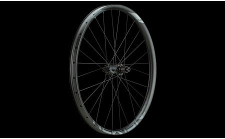 NEWMEN Laufrad Wheel Evolution SL A.35 29
