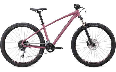 Specialized Pitch Expert 2X