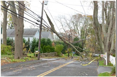 Hurricane Insurance and Hurricane Sandy