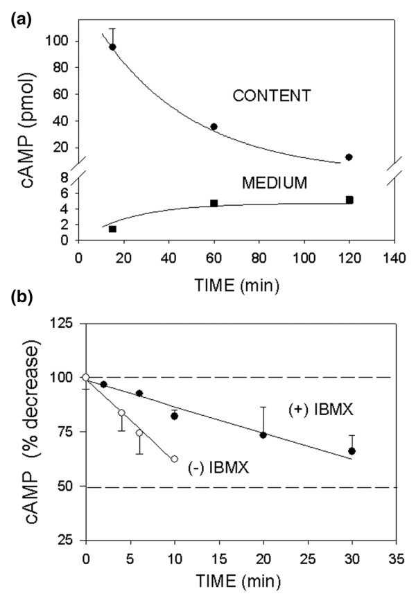 Kinetics of cAMP decrease in MCF-7 cells enriched for membrane estrogen receptor-α (mER high ) cells. (a) Cells were treated with 1 pmol/l 17β-estradiol (E 2 ) for different time intervals at 37°C in the presence of 1 mmol/l 3-isobutyl-1-methylxanthine (IBMX). The intracellular cAMP (circles) and that in the medium (squares) from the same cells were assessed. (b) cAMP was produced by directly stimulating adenylyl cyclase with 10 μmol/l forskolin for 15 min at 37°C. The decrease in cAMP in the cytosol was tested at 37°C in the absence (open circles) and presence of 1 mmol/l IBMX (closed circles). The entire regression lines were compared by evaluating the differences between the sums of squares of the residuals of individual lines with the sum of squares of the residuals of the combined line using an F-test. The data are presented as means ± standard error. The regression lines were significantly different ( P = 0.0001).