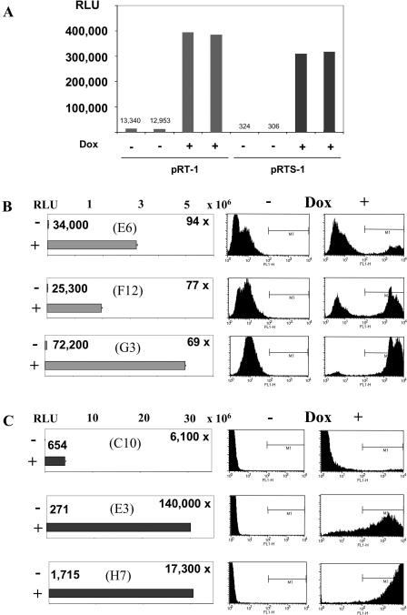 Reduction of background by the expression of tTS KRAB . ( A ) BJAB cells (10 7 ) were transfected with 10 μg pRT-1 and pRTS-1 DNA by electroporation. Cells were left untreated or treated with 1 μg/ml Dox immediately after electroporation and luciferase activity measured in cell extracts after 48 h. The relative light units of untreated cells are given above the columns. ( B and C ) Three BJAB cell lines were transfected with pRT-1 (B) or pRTS-1 (C), expanded in the absence of Dox, and analysed ∼2 months after transfection. Cells were treated with Dox or left untreated and were analysed for luciferase and eGFP expression 48 h after Dox addition. The luciferase activities of uninduced cells and the factor of inducibility are presented in the left panels. The differences in the factor of inducibility of pRT-1- and pRTS-1-transfected cells are due to the background activity in the absence of Dox. Note that the pattern of eGFP induction is not uniform in the different BJAB cell lines, even within one cell line. This is most probably due to the fact that the cell lines arising in individual wells of 96-well plates are not of clonal origin.