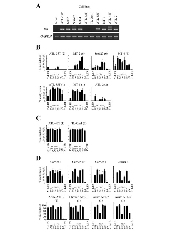 DNA methylation in ATL cell lines, HTLV-I carriers and ATL cases. The tax gene transcription in ATL cell lines was studied by RT-PCR (A), and the expression of GAPDH gene has been used as a control. DNA methylation throughout the HTLV-I provirus was studied by COBRA in tax gene-expressing (B) and non-expressing cell lines (C). Furthermore, DNA methylation was also analyzed in 20 carriers and 20 ATL cases by COBRA, and representative patterns of DNA methylation are shown in D. The number of HTLV-I provirus has been analyzed by Southern blot method, and shown in the parenthesis (B, C and D). Each bar indicates the extent of DNA methylation that was calculated by COBRA.