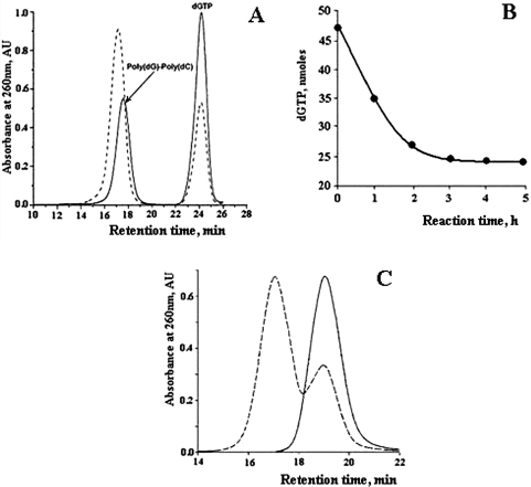 HPLC analysis of poly(dG–dG)–poly(dC) synthesis. ( A ) Size-dependent HPLC separation of the products of the synthesis. Polymerase extension assay was performed as described in 'Materials and Methods', with 2 µM 700 bp poly(dG)–poly(dC), 2.5 mM dGTP, 3.5 mM Mg 2+ and 10 µg/ml Klenow exo − at 37°C. The reaction was started by addition of the enzyme. Aliquots of 50 µl were withdrawn from the assay mixture before (solid curve) and 3 h after (dashed curve) the addition of the enzyme, and loaded on TSKgel G-DNA-PW column (7.8 × 300 mm). Elution was performed with 20 mM Tris-Acetate buffer, pH 7.0, at a flow rate of 0.5 ml/min. ( B ) Time course of dGTP consumption. Polymerase extension assay was performed as described in (A). Aliquots were withdrawn from the assay after every hour and chromatographed as shown in (A). Nucleotide peaks from size-exclusion separations were collected and the amount of dGTP in the peaks was measured by absorption spectroscopy as described in 'Materials and Methods'. The amount of dGTP in the assay is plotted against time of synthesis. ( C ) Size-dependent HPLC of poly(dG)–poly(dC) and poly(dG–dG)–poly(dC) at high pH. Poly(dG–dG)–poly(dC) was synthesized as described in (A). Initial poly(dG)–poly(dC) (solid curve) and poly(dG–dG)–poly(dC) derived from extension of G-strand in the poly(dG)–Poly(dC) (dashed curve) were pretreated for 15 min at room temperature in 0.1 M KOH. A total of 100 (l of each DNA sample were applied onto TSKgel G-DNA-PW column (7.8 × 300 mm) and eluted with 0.1 M KOH at a flow rate of 0.5 ml/min.