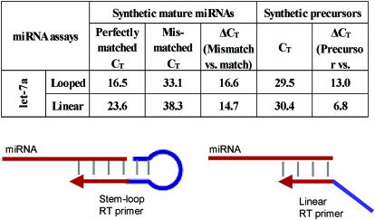 Specificity of TaqMan miRNA assays between stem–loop and linear RT primers. Mature let-7a-specific assay was tested against let-7a, let-7e and pri-miR precursor let-7a-3. Δ C T represents the C T difference between two targets or methods. A total of 1.5 × 10 8 copies of synthetic targets were added to each RT reaction.