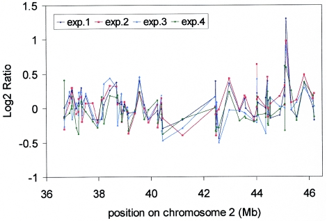 Reproducibility of the oligo array CGH platform. BT474 DNA was hybridized four times against normal human male reference DNA on four different days and on three different batches of 29 K human oligo arrays. Log2ratios were calculated without moving average and are displayed in different colours as indicated for each experiment as a function of their position on chromosome 2.