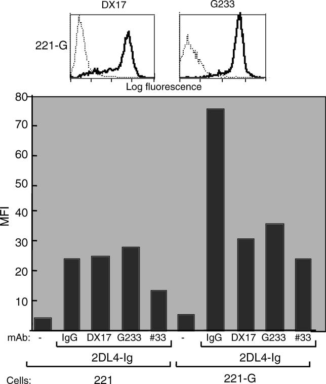 Binding of KIR2DL4-Ig Fusion Proteins to HLA-G–Expressing Cells Is Blocked by Anti-KIR2DL4 and Anti-HLA Class I mAbs (Top) 221-G cells were stained with mAb DX17 (pan–HLA class I mAb) and mAb G233 (HLA-G–specific mAb) (solid lines). Staining with secondary antibody alone is also shown (dotted lines). (Bottom) The 221 and 221-G cells were incubated with 50 μg/ml KIR2DL4-Ig fusion protein in the presence of 20 μg/ml of either isotype-matched control Abs or mAbs specific for class I (DX17), HLA-G (G233), or KIR2DL4 (33). Cells were then stained with goat anti-human IgG1 secondary antibodies and assessed by flow cytometry. The data are expressed as mean fluorescence intensity (MFI).