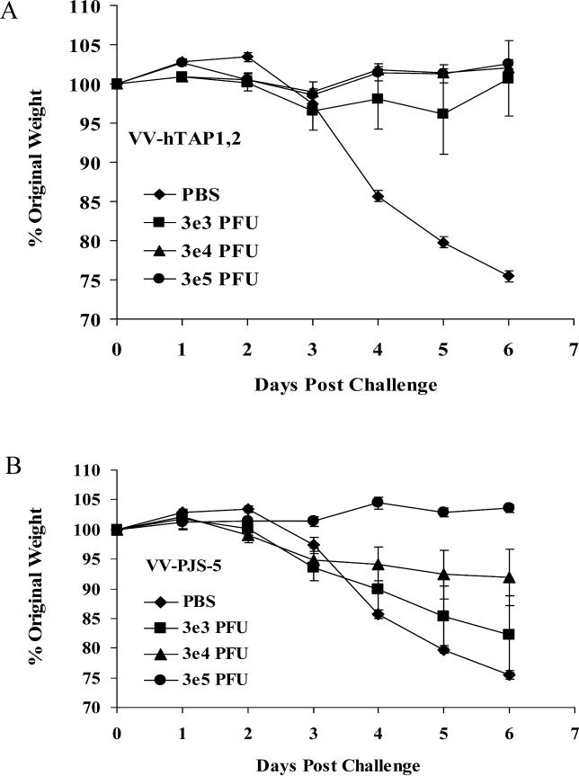 A Viral-Challenge Experiment Was Used to Measure the Protection Provided by Low-Dose Vaccination with VV-hTAP1,2 (A) Three groups of mice were vaccinated with escalating doses of VV-hTAP1,2 (3e3 PFU, 3e4 PFU, 3e5 PFU) and were challenged 14 d later with a lethal dose of VV-WR (1e5 PFU). Percentage weight change was measured as an indication of death and morbidity. Three doses of low-dose VV were administered. (B) Three Groups of mice were vaccinated with escalating doses of VV-PJS-5 (3e3 PFU, 3e4 PFU, 3e5 PFU), and were challenged 14 d later with a lethal dose of VV-WR (1e5 PFU). These groups served as negative controls for the effect of VV-hTAP1,2 on protection from lethal viral challenge. Mice vaccinated with PBS served as positive controls for lethal viral challenge. Data points represent mean weight changes ± standard error of the mean ( n = 6) recorded daily.