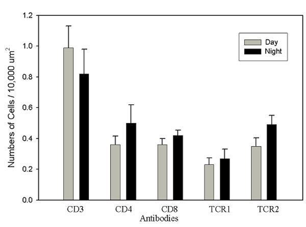 Quantitation of lymphocyte phenotypes in non-PALT compartments . Means (+sem) of the number of positive cells/area for each phenotype at the time points sampled. <t>Bu-1</t> + lymphocytes were not detectable in this compartment. Note differences in the scale compared to Figure 6.
