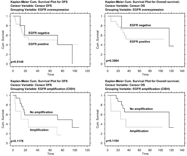 EGFR overexpression and amplification: prognostic impact on DFS and OS. CISH, chromogenic in situ hybridization; DFS, disease-free survival; EGFR, epidermal growth factor receptor; OS, overall survival.