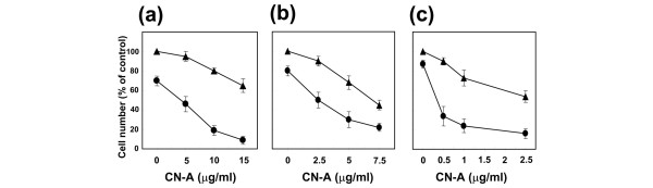 Combined effect of rapamycin and CN-A on the growth of human cancer cells. (a) human breast cancer T-47D cells (3 × 10 4 cells/ml) were treated with CN-A in the absence (black triangle) or the presence (black circle) of 0.5 ng/ml rapamycin for 5 days. (b) human breast cancer MBA-MB-231 (3 × 10 4 cells/ml) cells were treated with CN-A in the absence (black triangle) or the presence (black circle) of 15 ng/ml rapamycin for 5 days. (c) human promyelocytic leukaemia NB-4 cells (3 × 10 4 cells/ml) were treated with CN-A in the absence (black triangle) or the presence (black circle) of 0.5 ng/ml rapamycin for 5 days. Values are expressed as mean ± standard deviation for three separate experiments. CN-A, cotylenin A.