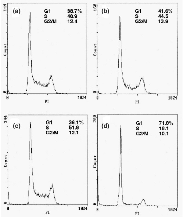 Induction of G 1 arrest in MCF-7 cells treated with rapamycin plus CN-A. Cells were cultured (a) without or (b) with 10 μg/ml CN-A, (c) 0.5 ng/ml rapamycin, or (d) 0.5 ng/ml rapamycin plus 10 μg/ml CN-A for 6 days, and DNA histograms were then analyzed. CN-A, cotylenin A.