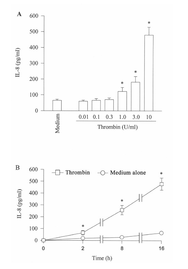 Effect of thrombin on the release of IL-8 from A549 cells. Cells were incubated ( A ) with various concentrations of thrombin at 37°C for 16 h, or ( B ) with 10 U/ml of thrombin for 2 h, 8 h and 16 h. Values shown are mean ± SE for 5 separate experiments. * P