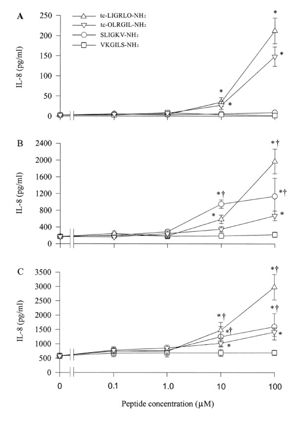 Effect of PAR-2 agonist peptides tc-LIGRLO-NH 2 and SLIGKV-NH 2 and their reverse peptides, tc-OLRGIL and VKGILS-NH 2 on IL-8 release from A549 cells. Cells were incubated with various concentrations of tc-LIGRLO-NH 2 (open triangle), tc-OLRGIL (open reverse triangle), SLIGKV-NH 2 (open circle) or VKGILS-NH 2 (open square) at 37°C for (A) 2 h, (B) 8 h and (C) 16 h. Values shown are Mean ± SE for five separate experiments performed in duplicate. * P