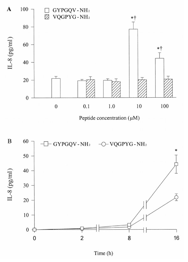 Effect of GYPGQV-NH 2 , a PAR-4 agonist peptide and its reverse peptide VQGPYG-NH 2 on release of IL-8 from A549 cells. Cells were incubated with various concentrations of GYPGQV-NH 2 or VQGPYG-NH 2 at 37°C for 16 h (A), or with 10 μM of GYPGQV-NH 2 for 2 h, 8 h and 16 h (B). Values shown are mean ± SE for 5 separate experiments. * P