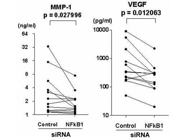 Suppression of the production of matrix metalloproteinase (MMP)-1 and vascular endothelial growth factor (VEGF) by silencing nuclear factor (NF)κB1 mRNA in bone marrow CD34+ cells from patients with rheumatoid arthritis. Purified bone marrow CD34+ cells from 12 patients with rheumatoid arthritis were transfected with small interfering RNA (siRNA) for NFκB1 or a scrambled sequence control siRNA, after which the cells were further incubated in culture medium with stem cell factor (10 ng/ml), granulocyte-macrophage colony stimulating factor (1 ng/ml) and tumor necrosis factor-α (10 ng/ml) for 4 weeks with no medium changes. After the incubation, the supernatants were harvested and assayed for MMP-1 and VEGF by ELISA. Statistical significance was evaluated by Wilcoxon's signed rank test.