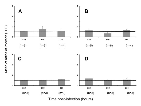 Infection with R5 or X4 envelope pseudotyped HIV-1 of placental chorionic villi in the absence or presence of TNF-α . Viral pseudotypes were left in contact with placental fragments overnight. After viral contact, fragments were cultured in medium supplemented with (grey histograms) or without (horizontal black line) TNF-α and cultures stopped at 120, 168 or 216 hours post-infection. Fragments were homogenised and luciferase activity read from tissue lysate. Results are presented as ratio (mean ± SE) of luciferase activity with TNF-α stimulation to activity without stimulation in three to seven (n) placentas from different donors. A: R5 (Ba-L) pseudotyped HIV-1 at 20 ng of p24/placental fragment; B: R5 (Ba-L) pseudotyped HIV-1 at 50 ng of p24/placental fragment; C: X4 (HXB2) pseudotyped HIV-1 at 50 ng of p24/placental fragment; D: X4 (HXB2) pseudotyped HIV-1 at 100 ng of p24/placental fragment.