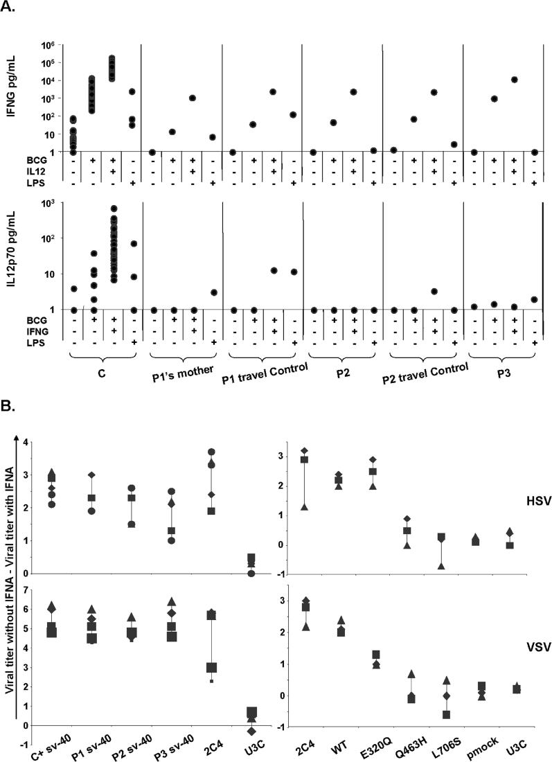 "Impact of Mutant STAT1 Alleles on IFNG- and IFNA-Mediated Immunity (A) Cytokine production in the supernatant of whole blood from healthy controls (C) and patients (P1′s mother, P2, and P3) and their respective ""travel"" control, not stimulated (NS) or stimulated for 72 h with live BCG alone or BCG plus IL12 or IFNG. The levels of IFNG and IL12 in the supernatant were determined by enzyme-linked immunosorbent assay. One experiment representative of two independent experiments is shown. (B) Skin-derived SV40-transformed fibroblasts from a healthy control (C), the three patients under study (P1, P2, P3), a parental fibrosarcoma cell line (2C4), STAT1-deficient U3C fibrosarcoma cell line (U3C), and U3C clones stably transfected with a mock (pmock), WT, E320Q, Q463H, or L706S STAT1 alleles, were infected with HSV-1 or VSV, with or without priorstimulation with IFNA (10 5 IU/ml) for 24 h. Viral titers were determined after 48 h of infection. Five independent experiments are shown for the patient's cells and three independent experiments are shown for sarcoma fibroblasts. Each assay is symbolized by a different character."