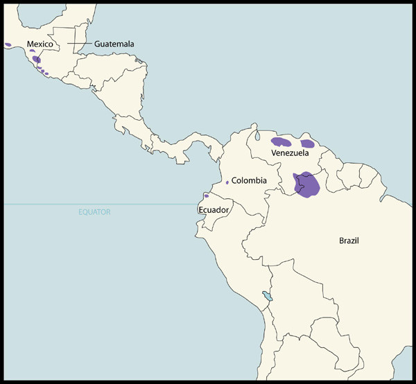 Foci in Latin America (OEPA region) where Onchocerciasis is Endemic and where Mass Treatment with Mectizan is Indicated and Ongoing, as of the end of 2005 . In Latin America (OEPA region), as of the end of 2005, all onchocerciasis endemic foci were indicated for twice-yearly mass treatment with Mectizan, regardless of endemicity, as a strategy for the elimination of onchocercal morbidity and transmission of infection. This map is reproduced with permission of the Annals of Tropical Medicine and Parasitology , 2006, Volume 100, pages 733–46.