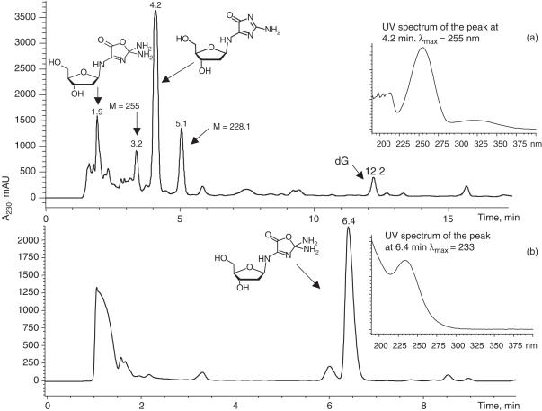 HPLC separation of the products resulting from dG photooxidation in the presence of riboflavin: ( a ) Separation of crude reaction mixtures by reversed phase HPLC. An Agilent Eclipse <t>XDB-C8</t> column was eluted with a gradient of acetonitrile in 150 mM ammonium acetate. ( b ) Further purification of oxazolone on a carbon column. A Thermo Hypersil-Keystone Hypercarb column was eluted with a gradient of acetonitrile in water.