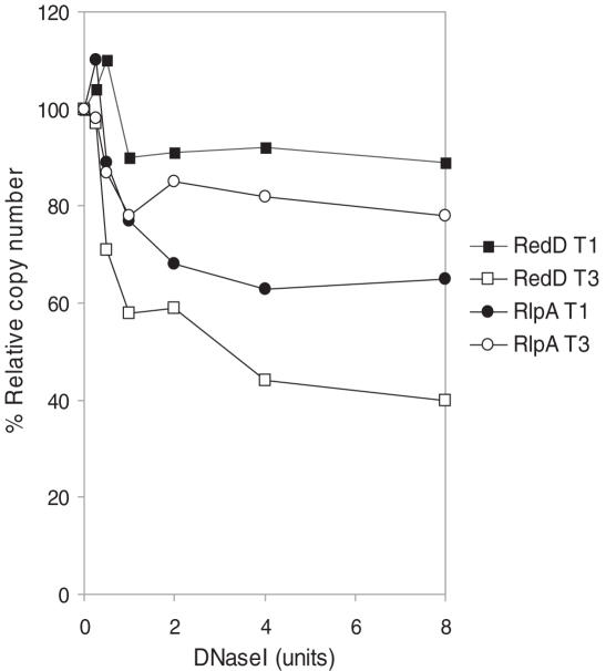 Quantifying changes in DNase I-sensitivity with qrt-PCR. qrt-PCR was used to detected small changes in DNase I-sensitivity in two reciprocally expressed genes ( redD and rlpA ) at the earliest and latest time points. In vivo digestions were performed as described in Figure 1 ; qrt-PCR is described elsewhere ( 6 ). <t>DNase</t> I sensitivity was estimated by the percentage loss of copy number after the rate of digestion had reached a steady level (commonly after 4 U of enzyme had been used).