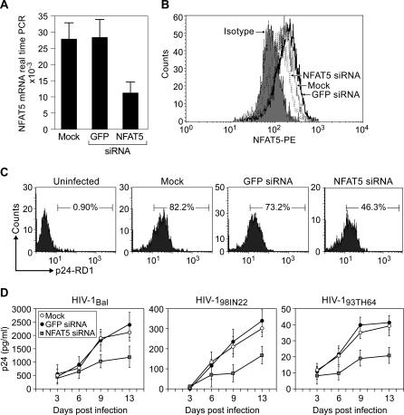 MDMs Constitutively Express NFAT5, Which Is Required for Replication of HIV-1 Representative Isolates from Subtypes B, C, and E (A) NFAT5 expression was detected in human MDMs using real-time PCR. NFAT5 mRNA expression was significantly inhibited 6 d after transfection with NFAT5 siRNA (NFAT5#1) compared with cells transfected with GFP siRNA or mock transfected ( p