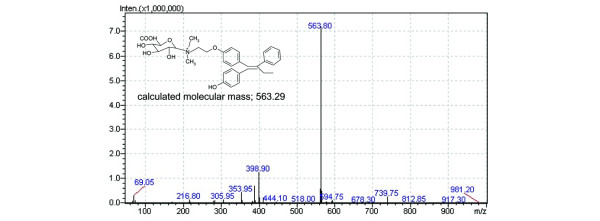 Representative mass spectra of trans -4-hydroxytamoxifen quaternary ammonium glucuronide formed by human liver microsomes. The predicted trans -4-hydroxytamoxifen quaternary ammonium glucuronide ( trans -4-OH-TAM- N + -glucuronide) was collected after separation by HPLC and identified by liquid chromatography–mass spectrometry using a Shimadzu LC-MS 2010 EV system. trans -4-OH-TAM- N + -glucuronide was loaded onto a C18 Shimadzu reverse-phase column and analyzed at a flow rate of 0.2 ml/min by applying a linear mobile phase gradient from 10% to 80% (v/v) methanol/H 2 O over 30 min. An electrospray voltage of 1.5 kV was applied using a positive mode.