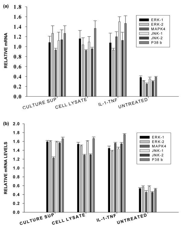 Mitogen-activated protein kinase (MAPK) family mRNA expression profile in human dermal fibroblasts (a) and human synovial fibroblasts (b) exposed to Staphylococcus aureus whole cell lysate and filtered culture supernatant. Confluent monolayers of de-identified human dermal fibroblasts from normal volunteer and synovial fibroblasts from a patient with rheumatoid arthritis were treated with 25 μg/ml per well of S. aureus whole lysate, filtered culture supernatant, and a combination of rhIL-1β and TNF-α (10 ng/ml each) for 8 hours. Cells were harvested and total cellular RNA was isolated and reverse-transcribed. The MAPK family gene expression was analyzed using the Human MAPK Gene Family I Multigene-12 reverse transcription-polymerase chain reaction (PCR) profiling kit. The semiquantitative values were generated by determining the ratios of the band intensities of respective PCR products to that of housekeeping gene GAPDH (glyceraldehyde phosphate dehydrogenase) in each sample. The experiments were repeated three times. The band densities were determined using three-dimensional densitometric scanning software from Alpha Innotech Corporation (San Leandro, CA, USA). Of the 11 tested Human MAPK Family I genes (ERK1, ERK2, MAPK2/4, ERK3, ERK5, JNK1, JNK2, JNK3, p38b MAPK, p38g MAPK, and p38delta), ERK1, ERK2, JNK1, JNK2, MAPK4, and p38b were elevated significantly in both dermal and synovial fibroblasts upon exposure to S. aureus components ( p