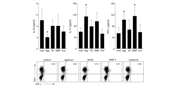 Cytokine production in short-term peptide-specific T-cell lines from patients with juvenile idiopathic arthritis (JIA). Short-term peptide-specific T-cell lines were generated from peripheral blood mononuclear cells of five patients with polyarticular JIA. After 14 days of culture, supernatants were taken for multiplex cytokine analysis and cells were stained for fluorescence-activated cell sorting (FACS) analysis. The aggrecan peptide induced significant production of interferon-γ (IFN-γ)/interleukin (IL)-17 and inhibition of IL-10 production ( p