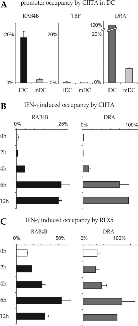 Occupation of the RAB4B promoter by the MHC-II regulatory machinery in DC and IFN-γ induced cells. ( A ) Binding of CIITA to the RAB4B , HLA-DRA and TBP promoters was analyzed by ChIP in DC before (iDC) and after (mDC) maturation with LPS. Results are represented as % of the occupation observed at the HLA-DRA promoter in iDC. The TBP promoter was used as a negative control. ( B and C ) ChIP was used to measure occupancy of the RAB4B promoter by CIITA ( B ) and RFX5 ( C ) in Me67.8 melanoma cells induced with IFN-γ for 0, 2, 4, 6 and 12 h. Results are represented as % of the occupation observed at the HLA–DRA promoter after 12 h of induction.