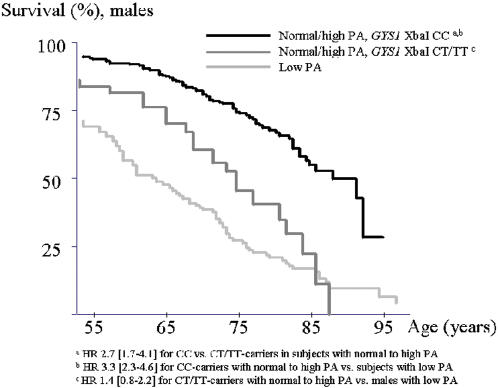 Interaction between the GYS1 XbaI polymorphism and physical activity (PA) in males. Kaplan Meier survival curves for males reporting normal to high physical activity (PA) level according to GYS1 XbaI genotype compared to males with low PA level.