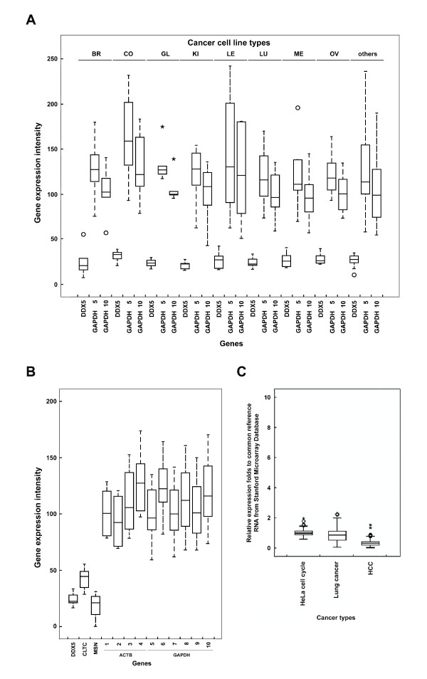 Box plots of DDX5 relative expression patterns exhibit small variation across various microarray datasets . The gene expression patterns of DDX5 were obtained from other microarray databases. These datasets were from 84 cancer cell lines (NCI60), which were classified into 8 different cancer cell types and other cell lines (A). GAPDH #5 : M33197_3_at; GAPDH #10 : 212581_x_at. The box plot results indicated that DDX5 exhibited only small variation across the various NCI60 cell types. For the lung cancer cell lines, DDX5 , CLTC and MSN all gave lower variances than ACTB and GAPDH (B). Both ACTB (#1–4) and GAPDH (#5–10) are contained in 10 probe sets on the HG-U133A chip and are shown as #1–10 on x-axis and in Table 1. The variation of DDX5 was also smaller for the HeLa cell cycle dataset, lung cancer dataset and HCC dataset from the Stanford Microarray Database (C). BR: breast cancer, CO: colon cancer, GL: glioblastoma, KI: Kidney, LE: leukemia, LU: lung cancer, ME: melanoma and OV: ovarian cancer.