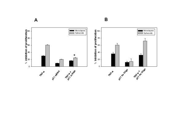 A-B. p21 but not p27 is involved in TNF-α induced inhibition of proliferation . (A) LN-18 cells were transfected with p21 siRNA oligonucleotides (100 nM) or (B) p27 antisense (As) oligonucleotides (200 nM) for 6 hr and cultured as monolayers or spheroids for 18 hr. Cells were treated with TNF-α (10 ng/ml) for 24 hr, and tritiated thymidine incorporation assay was done as described in Fig. 1. * p