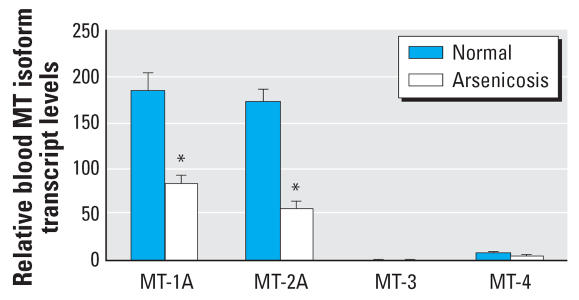 The expression of human MT isoforms in blood cells of arsenic-exposed patients ( n = 48) and healthy subjects ( n = 48) in Guizhou, China. Total RNA was extracted, purified, reverse-transcripted, and subjected to SYBR Green real-time quantitative RT-PCR with MT isoform primers. Data are mean ± SE. *Significantly different from healthy controls at p