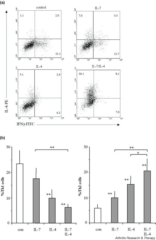 Intracellular detection of IFN-γ and IL-4 by FACS analysis. (a) A representative of seven rheumatoid arthritis (RA) patients of which mean values are shown in (b) . Cytokine production of the CD3/CD28 costimulated CD4 + T cells was assessed after 10 days of culture in the absence or presence of IL-7, of IL-4 or of their combination. Cytokine production of differentiated cells was analyzed upon ionomycin/phorbol myristate acetate stimulation for 6 hours in the presence of Brefeldin A. Means ± standard errors of the mean of percentages from cells of RA patients that produce IFN-γ but no IL-4 (Th1) and that produce IL-4 but no IFN-γ (Th2) upon differentiation are shown. * P
