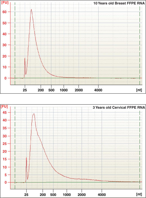 Electropherogram of total RNA recovered from FFPE samples utilized in CT-RT experiments. Total RNA extracted from 10-year-old breast cancer and 3-year-old cervical FFPE tissues were loaded on a Agilent 2100 Bioanalyzer 6000 Nanochip. Electropherograms were obtained with the 2100 expert software from Agilent, version B.02.03.SI307. 18S and 28S ribosomal RNA peaks are not detected in either FFPE sample, indicative of severe degradation.
