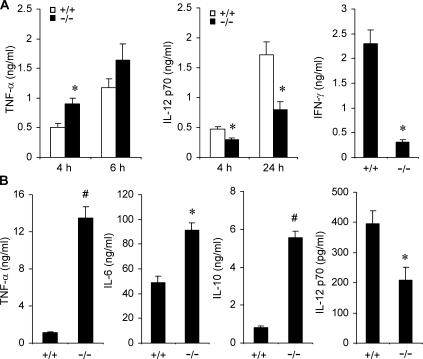 Knockout of Mkp-1 shifts the pattern of cytokine expression in splenocytes and dendritic cells. (A) Cytokine expression in LPS-stimulated splenocytes. Splenocytes isolated from Mkp-1 +/+ and Mkp-1 −/− mice were stimulated with 100 ng/ml LPS for the indicated times, and cytokine concentrations in the medium were assayed by ELISA. IFN-γ levels were measured 24 h after LPS treatment. Data are presented as the mean ± SEM ( n = 3–9 for each group). *, Mkp-1 −/− different from Mkp-1 +/+ , P